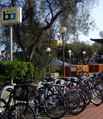 Photo of Bikes at Bart