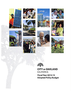 image of the front cover of the FY 2013-15 Adopted Budget