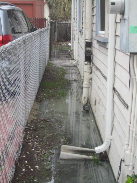Sewer Lateral Leak