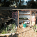 Thumbnail of  Golden Gate Community Garden