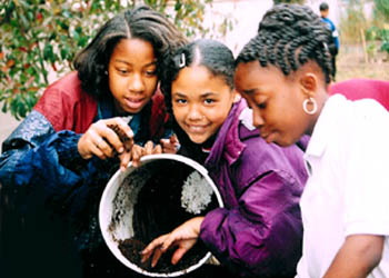 Photo of Children Composting