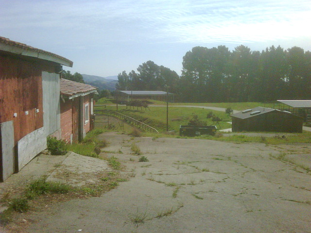 Photo of Oakland City Stables, old stables and grounds