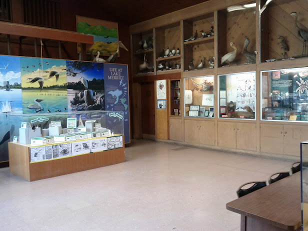 Photo: Exhibits inside the Rotary Nature Center