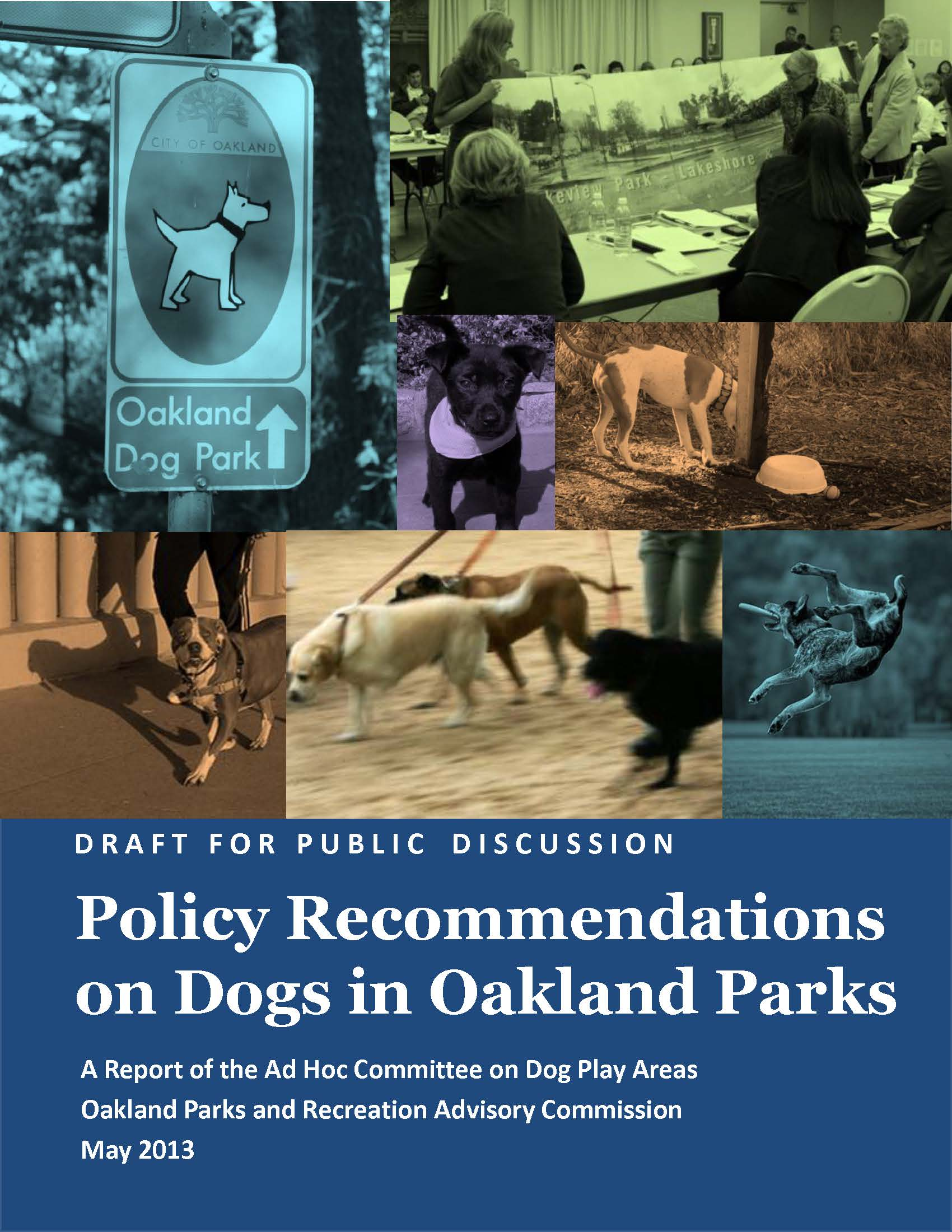 Policy on Dogs Cover