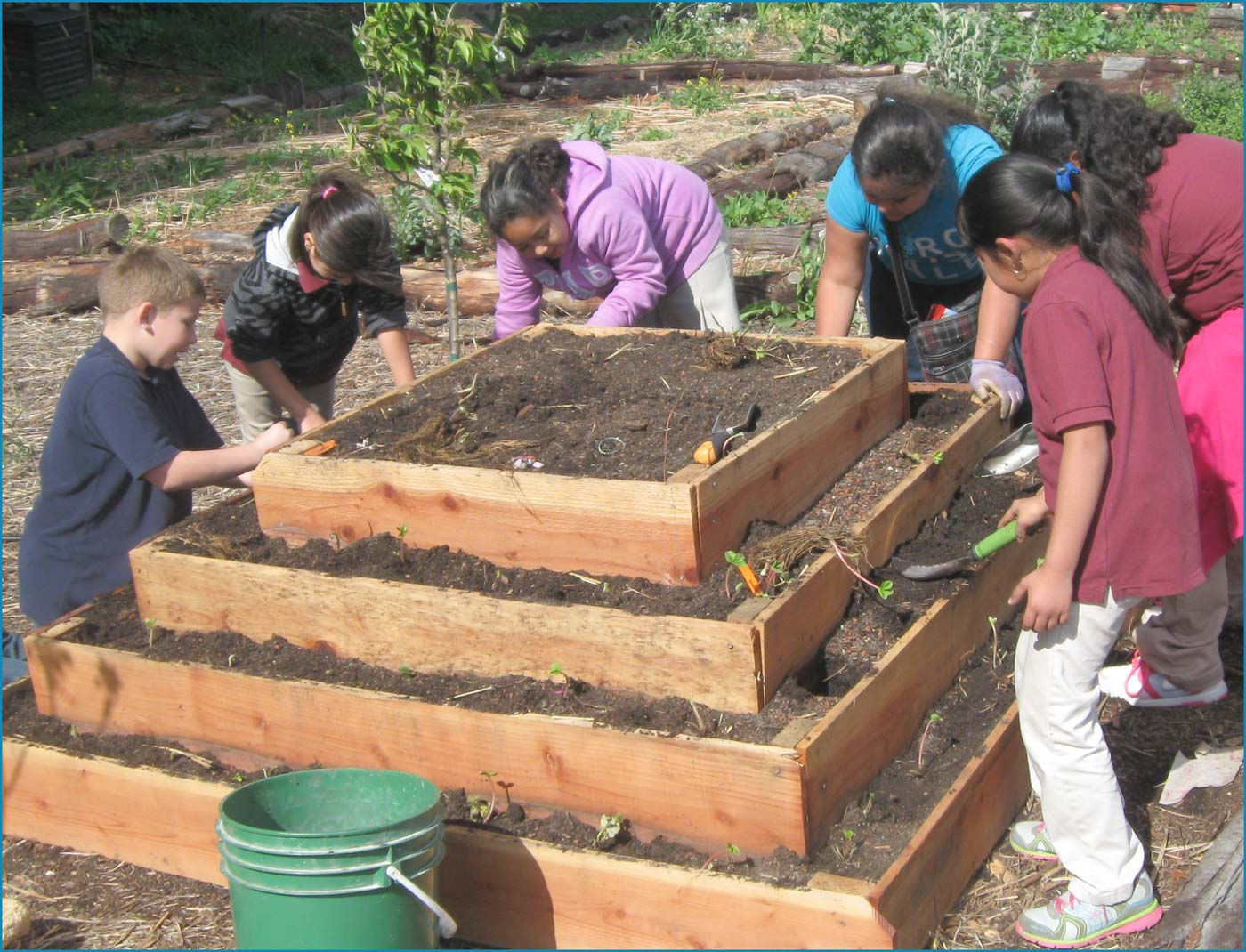 Photo of Stonehurst Edible Schoolyard garden