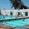 Thumbnail of the Live Oak Pool