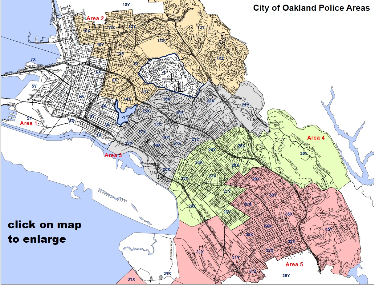 OPD 5 areas map with click note