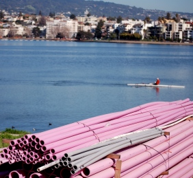 purple pipe Lake Merritt boathouse