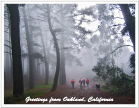 thumbnail photo of Redwood Park