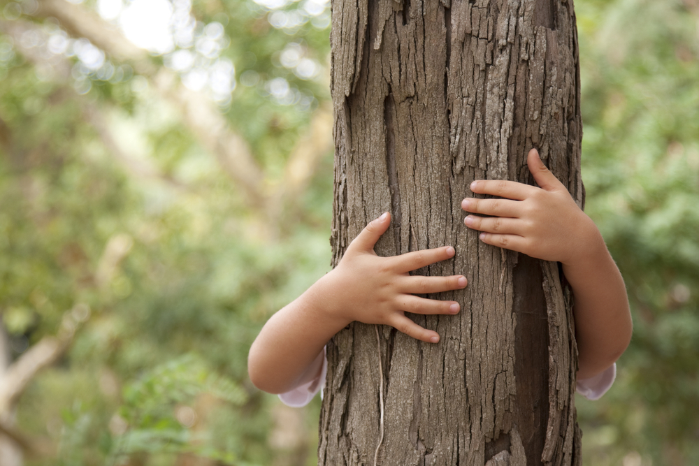 tree hug image from shutterstock