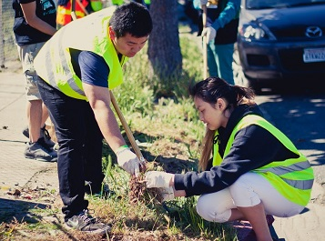 Volunteers weeding near MacArthur BART station as part of Oakland's Adopt A Spot program