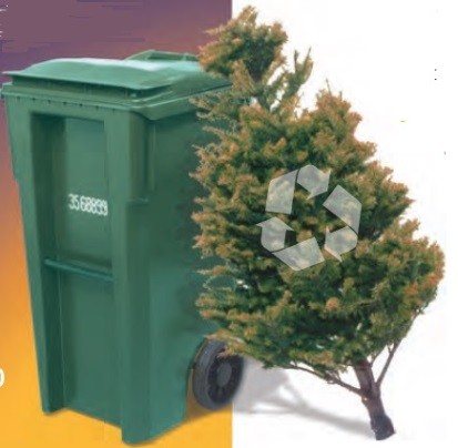 Organics Recycling Cart and Holiday Tree