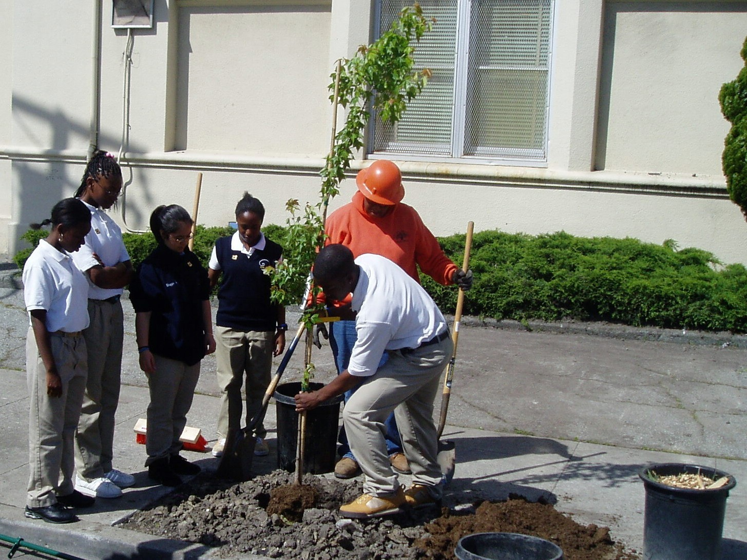 Arbor Day Students Plant tree