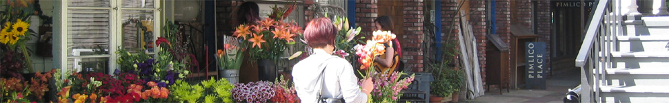 flower shopping jpg